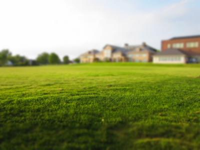 Essential Things Regarding Installing Atlanta Sod to Beautify Your Land!